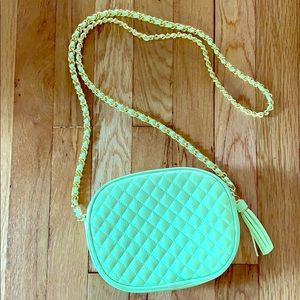 Vintage Amanda Smith quilted pale green crossbody